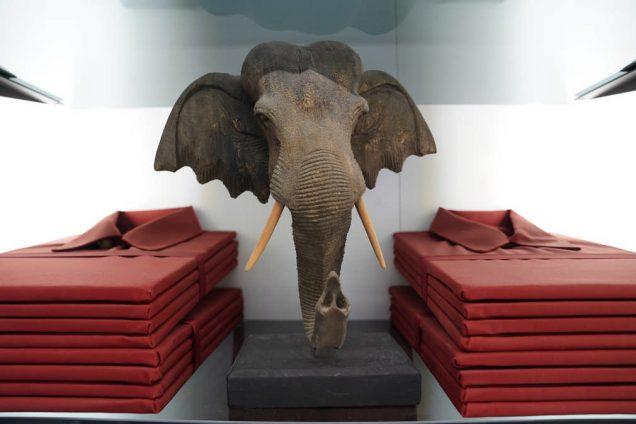 Schubladen und Sonderteile | Elefantenkopf 1